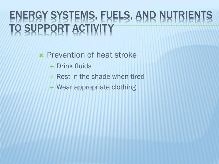 Energy Systems, Fuels, and Nutrients to Support Activity