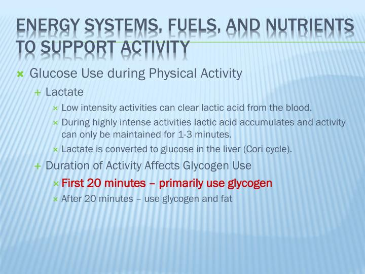 Glucose Use during Physical Activity