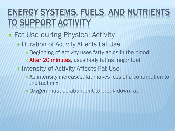 Fat Use during Physical Activity