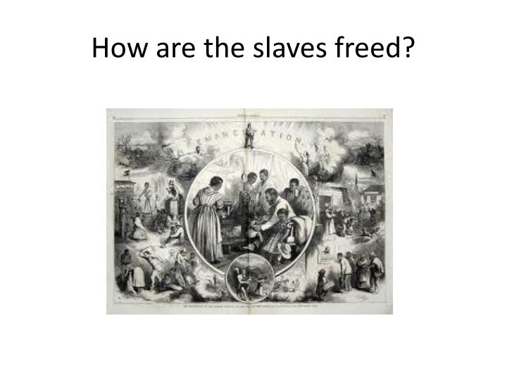How are the slaves freed?
