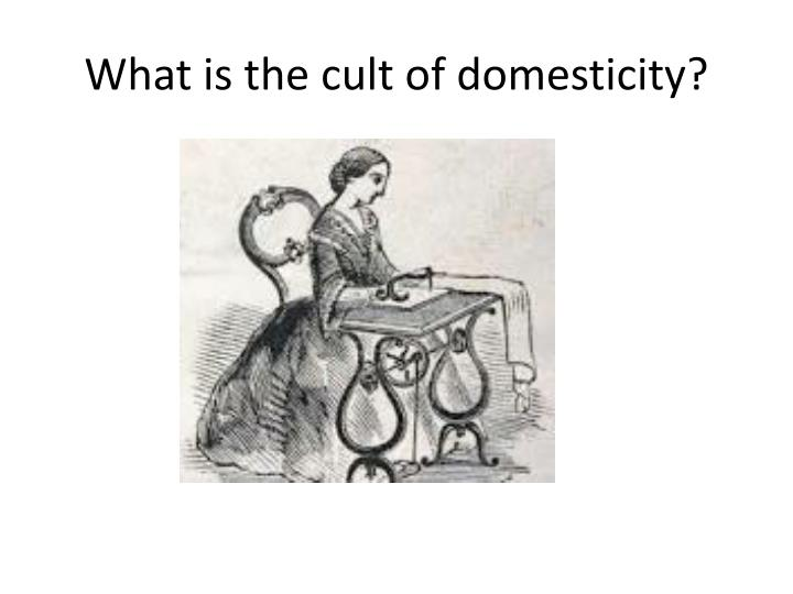 What is the cult of domesticity?