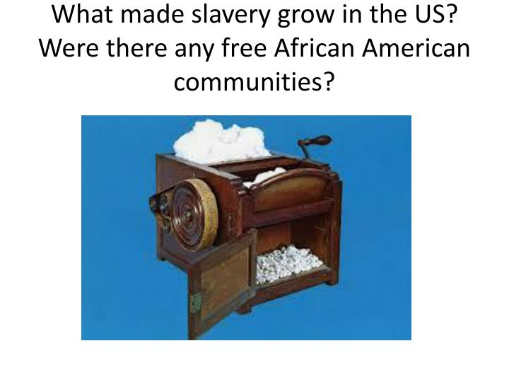 What made slavery grow in the US? Were there any free African American communities?
