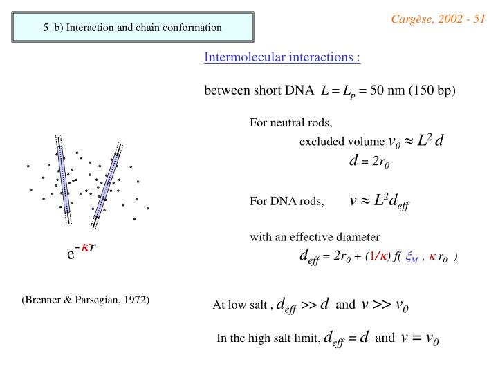 5_b) Interaction and chain conformation