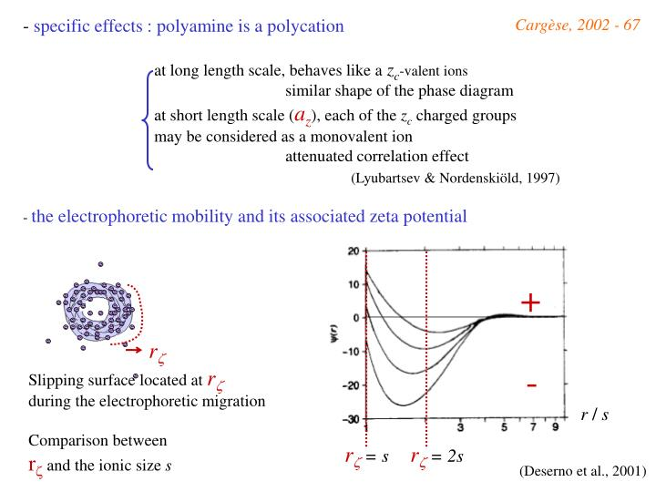 specific effects : polyamine is a polycation