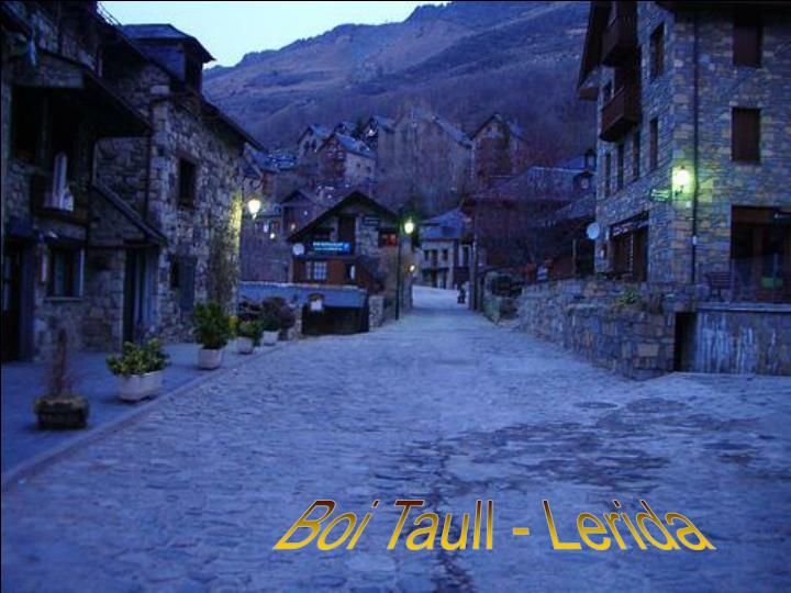 Boi Taull - Lerida
