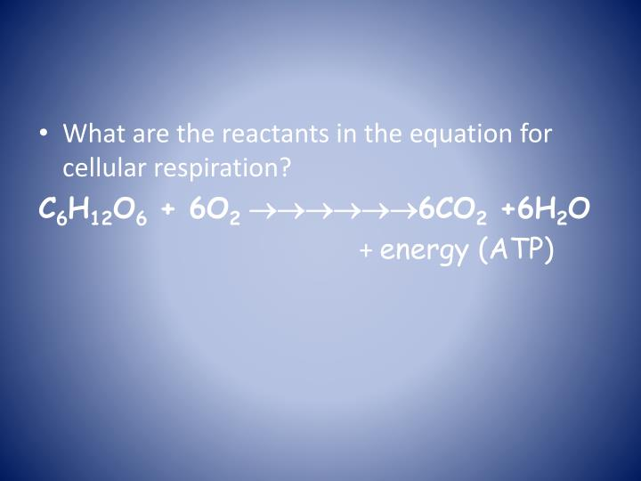 What are the reactants in the equation for cellular