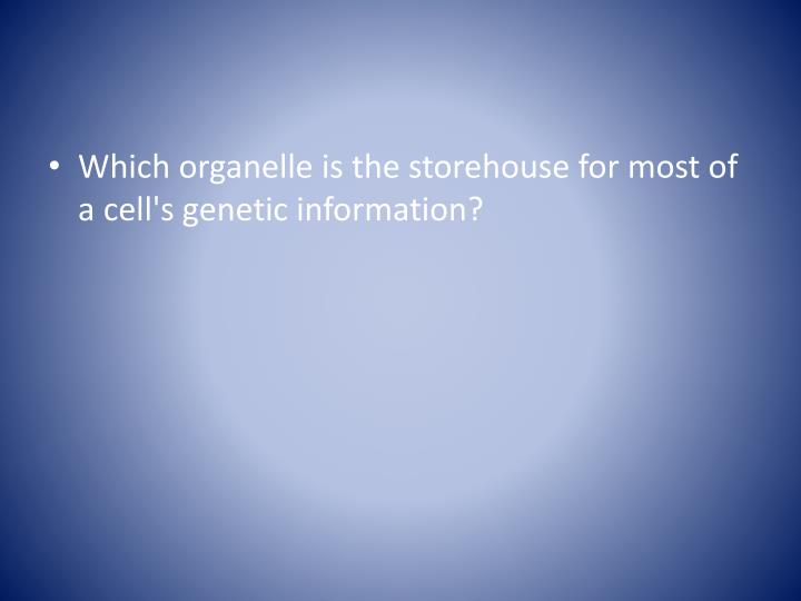 Which organelle is the storehouse for most of a cell's genetic information?