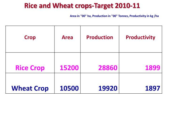 Rice and Wheat crops-Target 2010-11