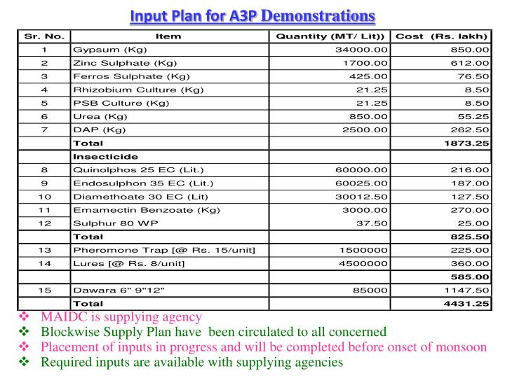 Input Plan for A3P