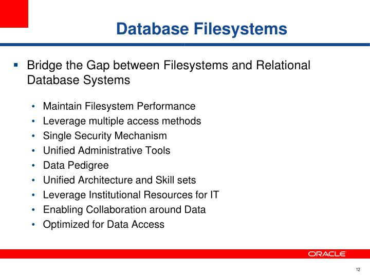 Database Filesystems