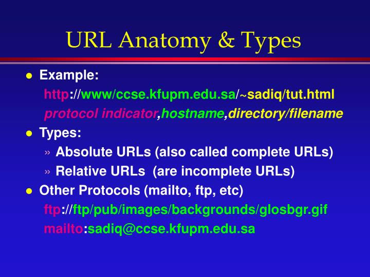 URL Anatomy & Types
