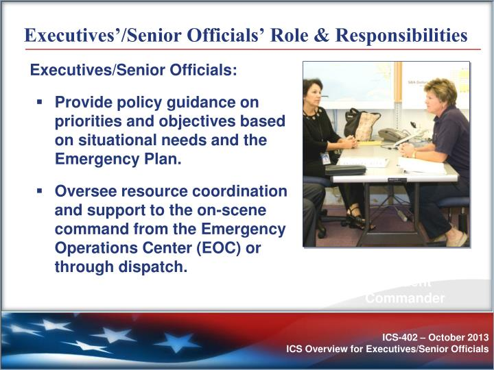 Executives'/Senior Officials' Role & Responsibilities