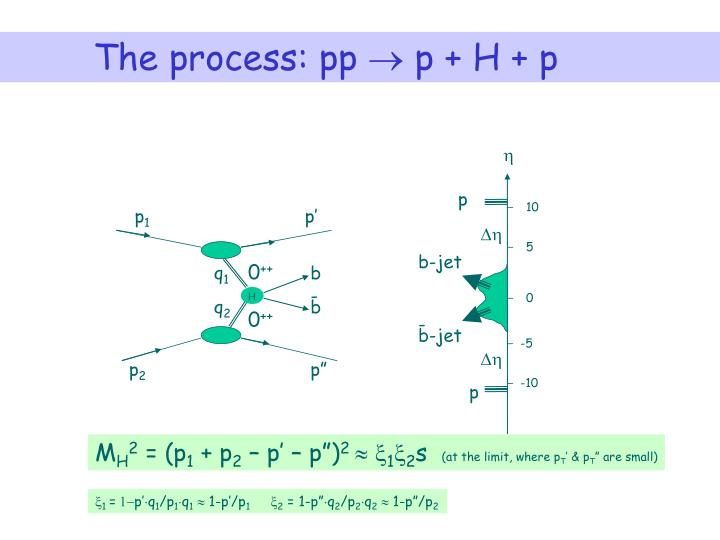 The process: pp