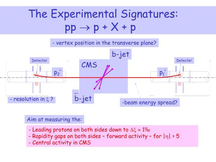 The Experimental Signatures: