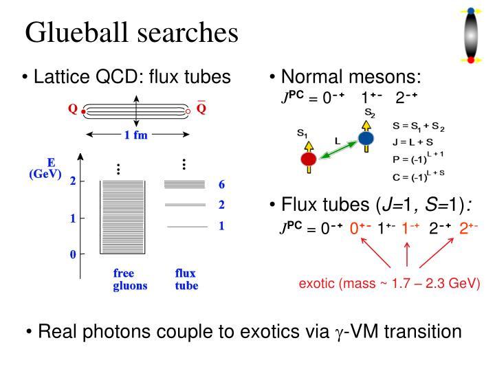 Glueball searches