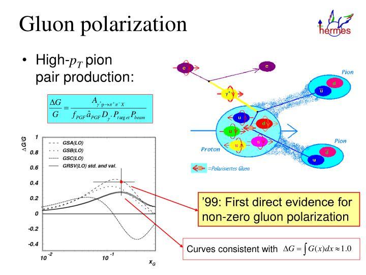 Gluon polarization