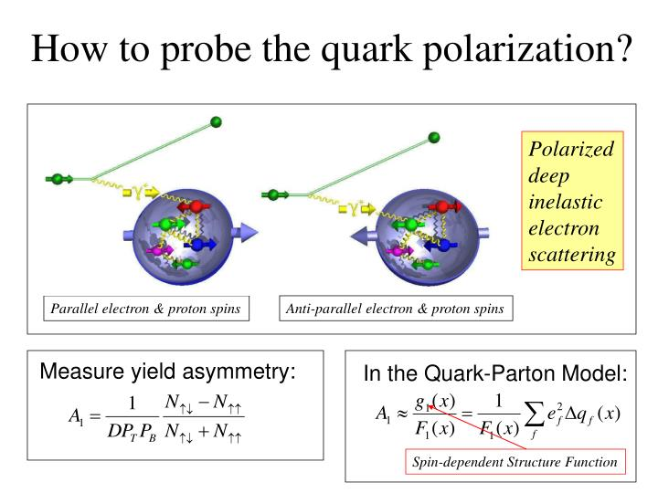 How to probe the quark polarization?