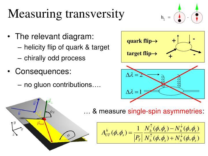 Measuring transversity