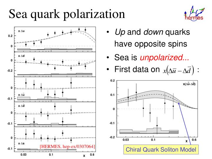 Sea quark polarization
