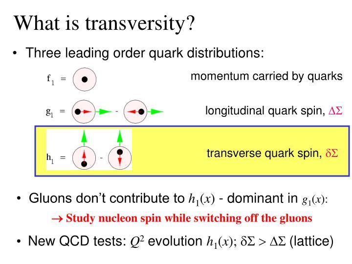 What is transversity?