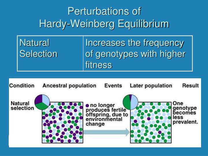 Perturbations of