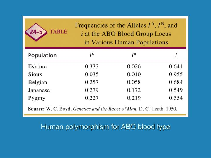 Human polymorphism for ABO blood type
