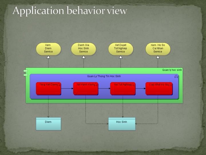Application behavior view