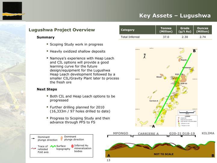 Key Assets – Lugushwa