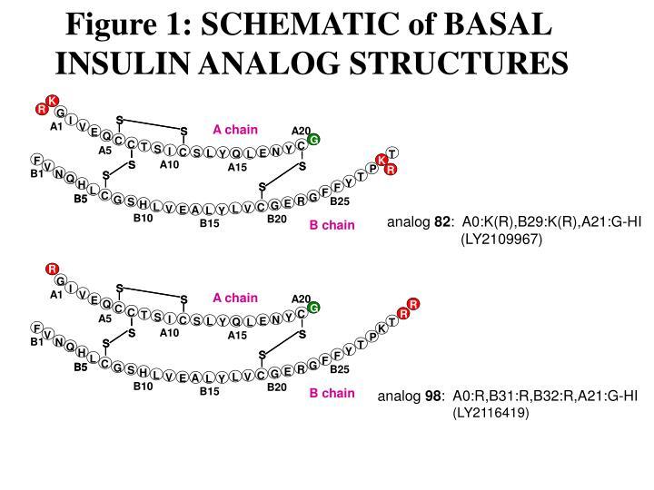 Figure 1: SCHEMATIC of BASAL