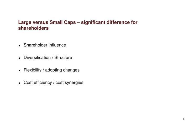 Large versus Small Caps –