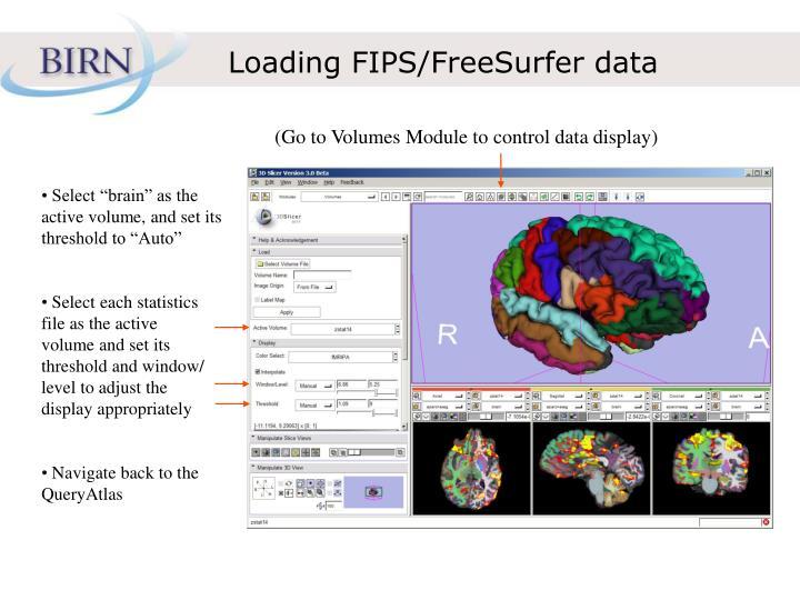 Loading FIPS/FreeSurfer data