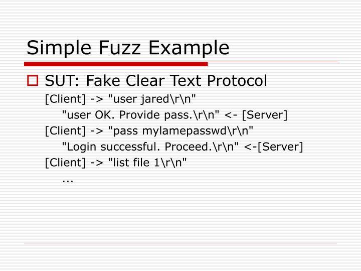 Simple Fuzz Example