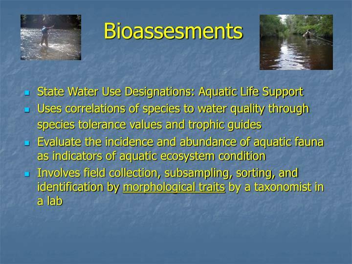 Bioassesments