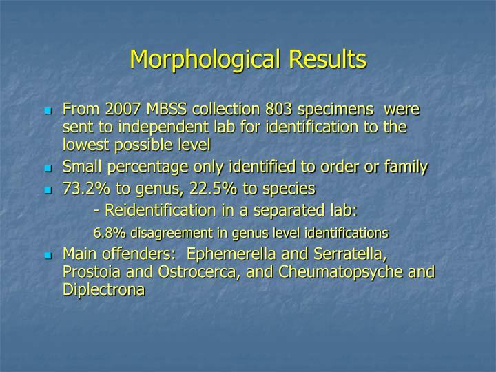 Morphological Results