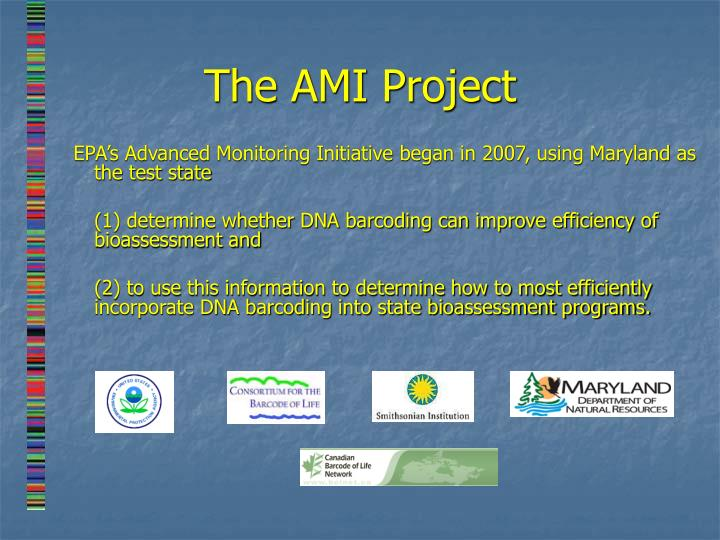 The AMI Project