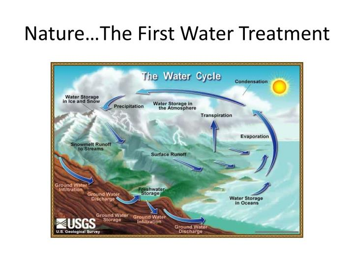 Nature…The First Water Treatment
