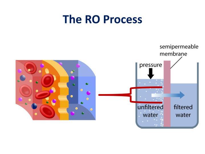 The RO Process