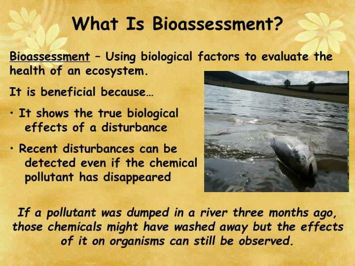 What Is Bioassessment?