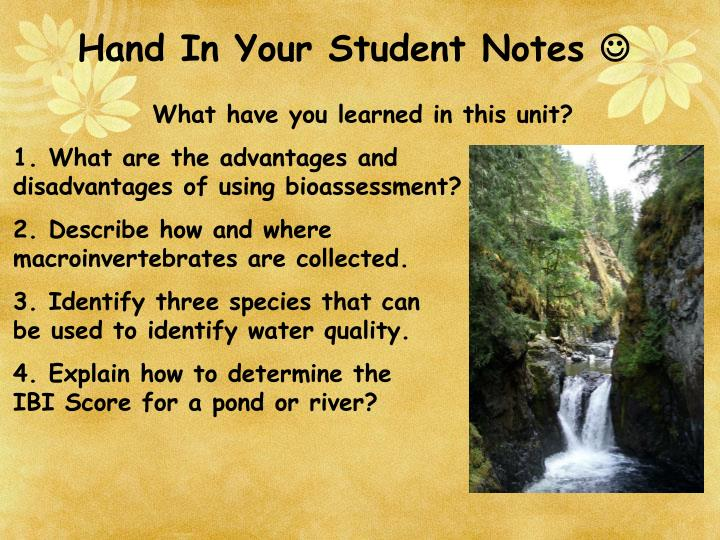 Hand In Your Student Notes