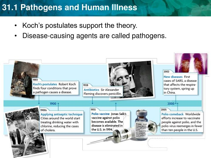 Koch's postulates support the theory.