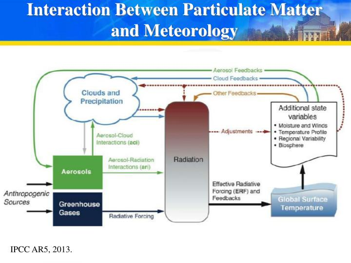 Interaction Between Particulate Matter and