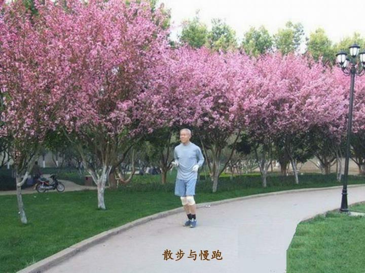 散步与慢跑