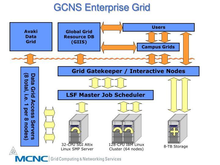 GCNS Enterprise Grid