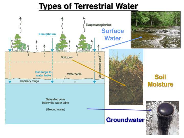 Types of Terrestrial Water