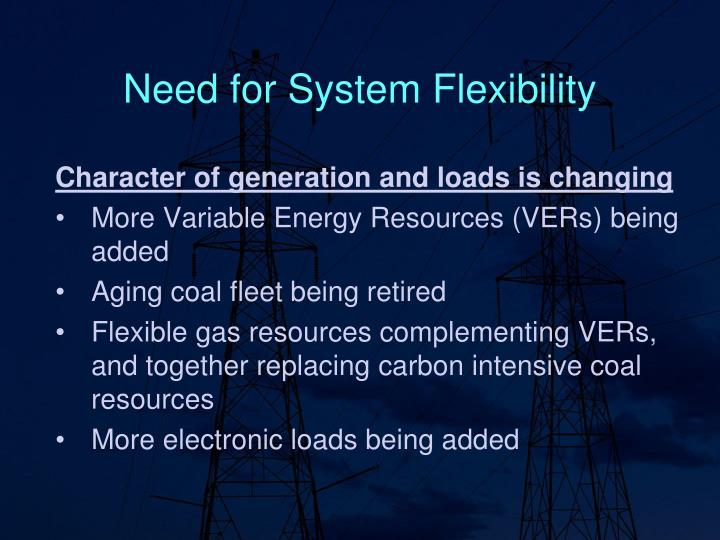 Need for System Flexibility