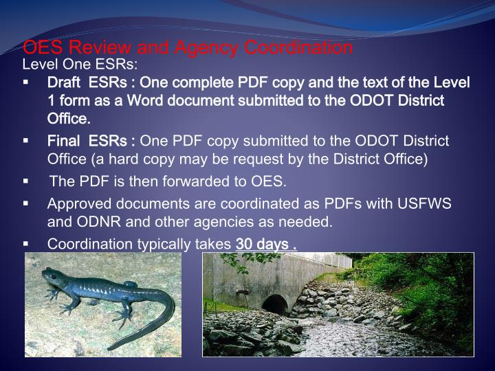 OES Review and Agency Coordination