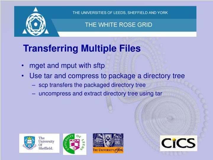 Transferring Multiple Files