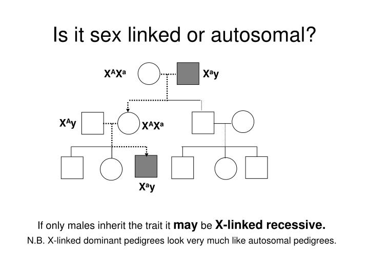 Is it sex linked or autosomal?