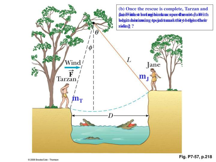 (b) Once the rescue is complete, Tarzan and Jane must swing back across the river. With what minimum speed must they begin their swing ?