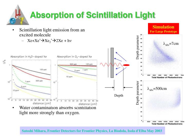 Absorption of Scintillation Light